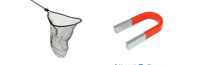 Net and Magnet