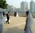 multiple brides