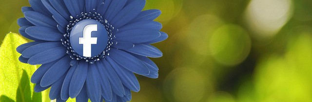 Facebook Blue Flower