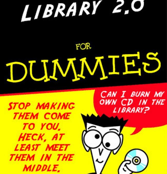 organization for dummies
